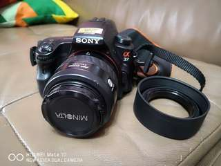 Sony SLT A37 with Minolta AF Zoom 35-70mm