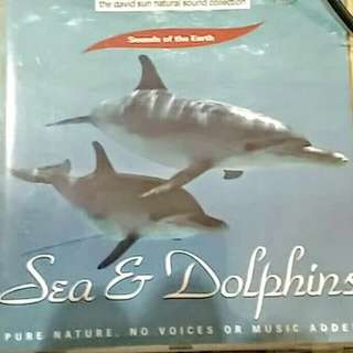 CD Sea & Dolphins