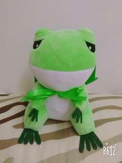 🚚 旅行青蛙🐸🐸~~戴荷葉帽怕下雨😁