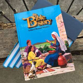 The Bible Story set