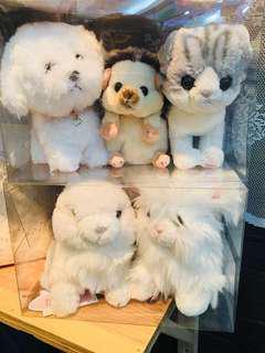 日本直送🇯🇵可愛小動物🐶🐰🐱🐾