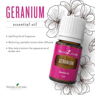 🚚 [FREE MAIL]Young Living Geranium 15ml