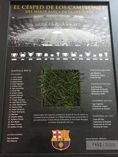 Official champions league grass