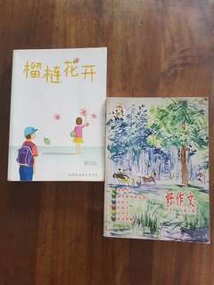 Chinese / Composition Books