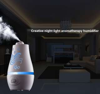 USB Anion Air Humidifier Aromatherapy Aroma Diffuser 100ml Capacity Cup 2 Mist Modes for Essential Oil for Office Car Home Use White - intl