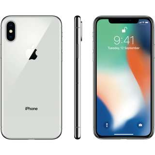 USA Version iPhone X 256GB silver