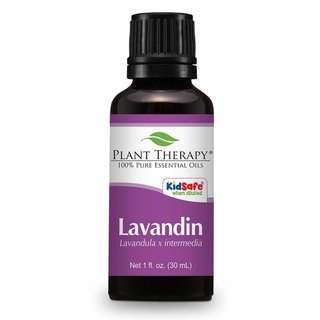 Plant Therapy Lavandin Essential Oil 30 mL