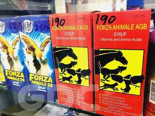 FORZA Animale DS (BLUE)