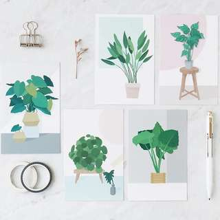 (PO) Potted Plants Postcards/ Post Cards