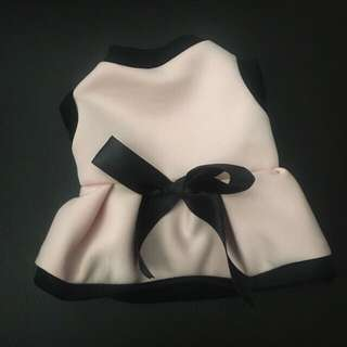 Black & Pink dog dress