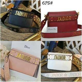 Bag Dior