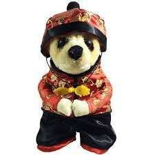 Chinese New Year Costume for pets