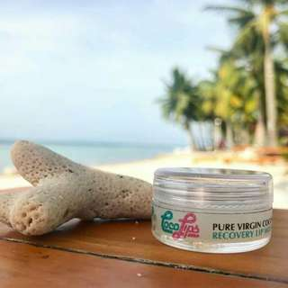 Wise Coco Recovery Lip Balm