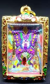 Butterfly(M) Kruba Krissana 2561