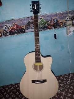 Gitar lakewood suara renyah