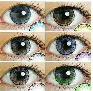 Softlens B. Best