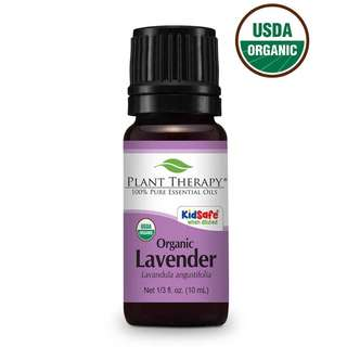 Plant Therapy Lavender Organic Essential Oil 10 mL