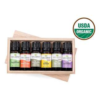 Plant Therapy Top 6 Singles Organic Essential Oil Set 10 mL