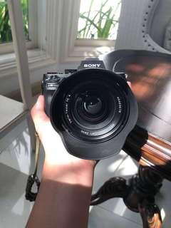 Sony a7ii + Zeiss 24-70mm f4