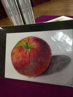 Drawing - colored pencil drawing