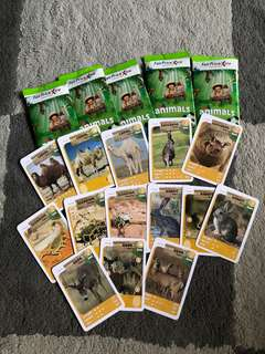 Fair Price Animal collection cards-Deserts Habitat