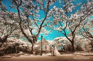 Wedding day photography & videography service