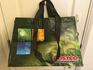 Costco nylon shopping bag