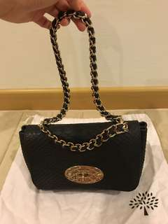 Mulberry snake Authentic