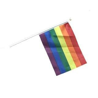 Rainbow Flag | LGBT Flag | Lesbian, Gay, Bisexual, Trans