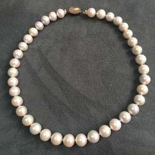 大粒淡水珍珠頸鍊