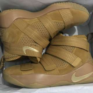 Le bron shoes