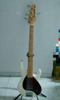 Bass 5 string sterling musicman