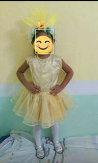Still Avail: Gold Tutu with headdress