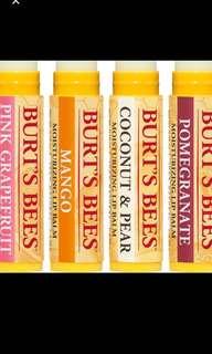 SALES Burt's Bees Lip Balm