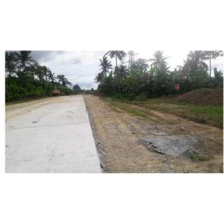 East-West Road farm Lot in Amadeo Cavite for Sale!