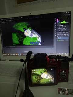 Nikon coolpix P500 Rush rush 😊