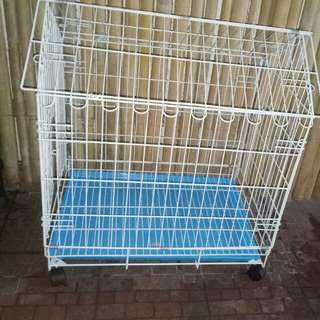 Cage for Dor or Cat
