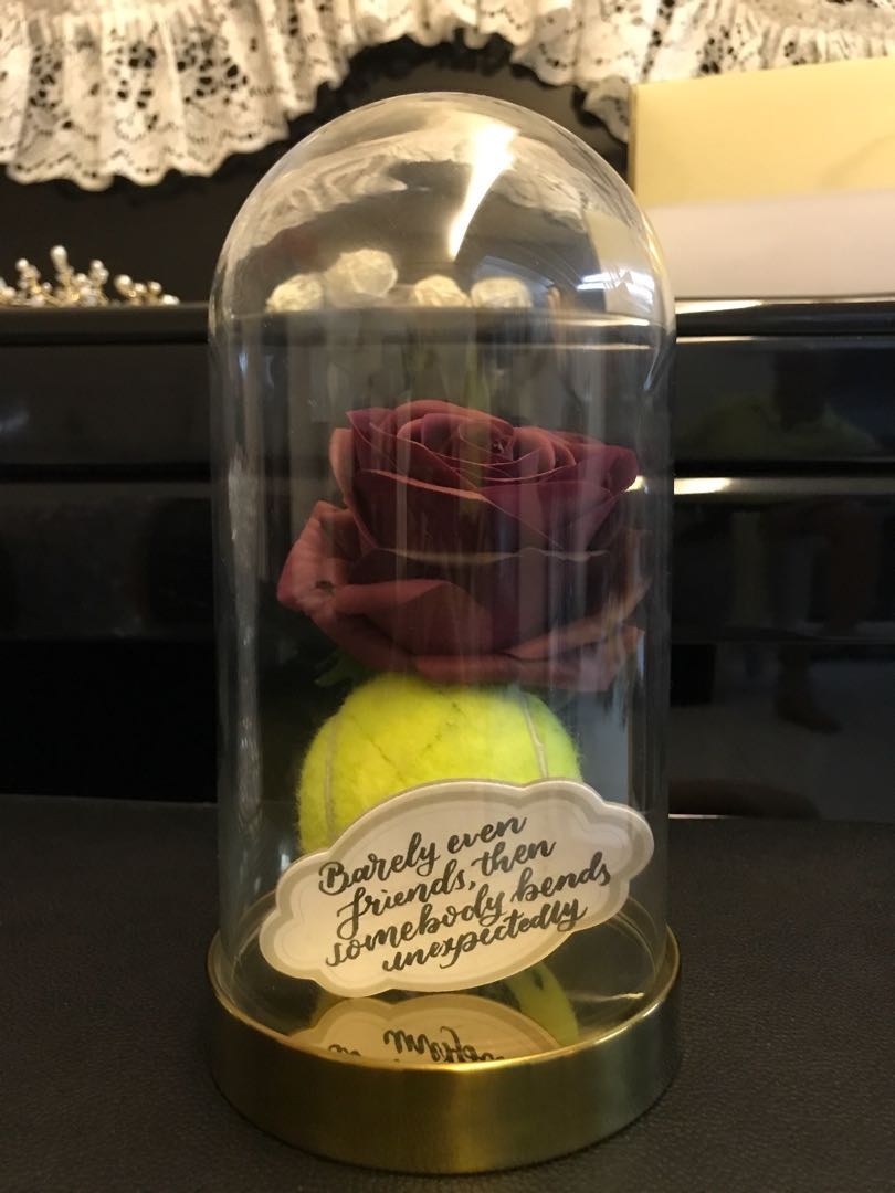 Beauty And The Beast Rose Jar Design Craft Others On Carousell