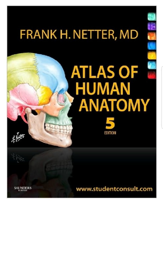 Netters Atlas Of Human Anatomy 5th Ed Pdf Books Books On Carousell