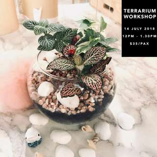 🚚 Terrarium Workshop| 14 July (12.00pm - 1.30pm)