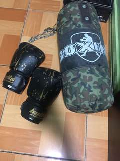 Boxing Gloves & Punching Bag