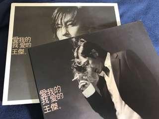 愛我的我愛的 王傑 CD