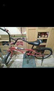 Bike medium size
