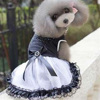 Black & White Mesh Dress