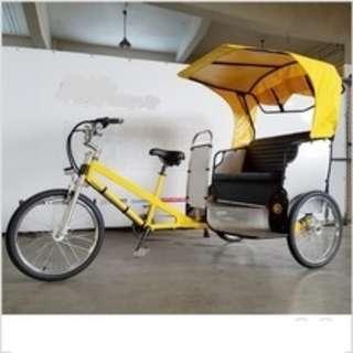 fabrication of E RICKSHAWS and trike bikes for sales