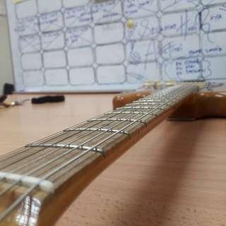 Stratocaster (Partcaster)
