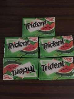 Trident gum 香口膠 5 packs