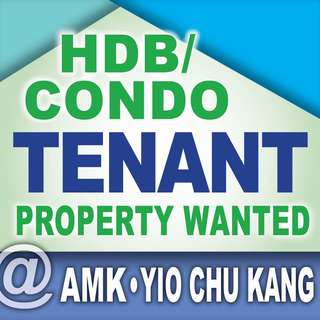 Ready Tenant looking for Condo or HDB @ Ang Mo Kio and Yio Chu Kang
