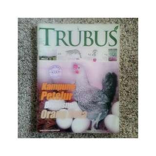 Majalah Trubus - Kampung Petelur Bisnisnya Orang Kota