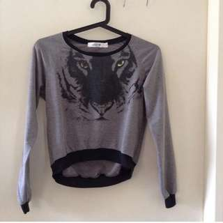 Gray pullover. Small-medium. Used condition but no flaw